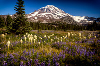 Mount Rainier and Spray Park